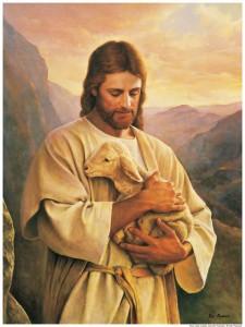 Jesus Christ Lamb