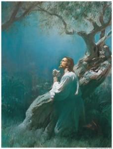 Jesus prayed to God as Mormons do.
