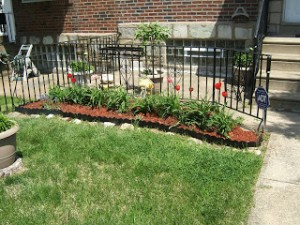Patty's Philadelphia garden