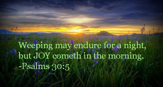 Joy cometh in the morning