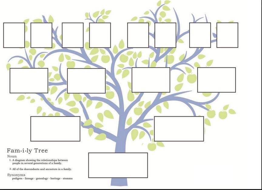 Decorative family tree for wall