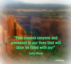 Pain creates canyons in our lives that can later be filled with joy