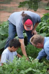 people gardening
