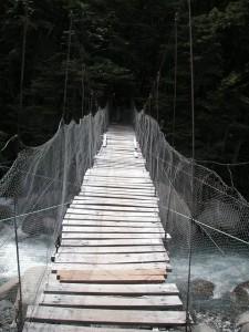 suspension bridge over rough waters