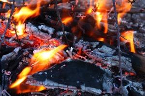 fire in embers