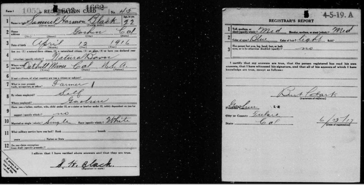 genealogy image