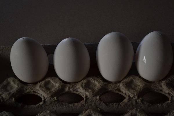 pierced eggs on carton