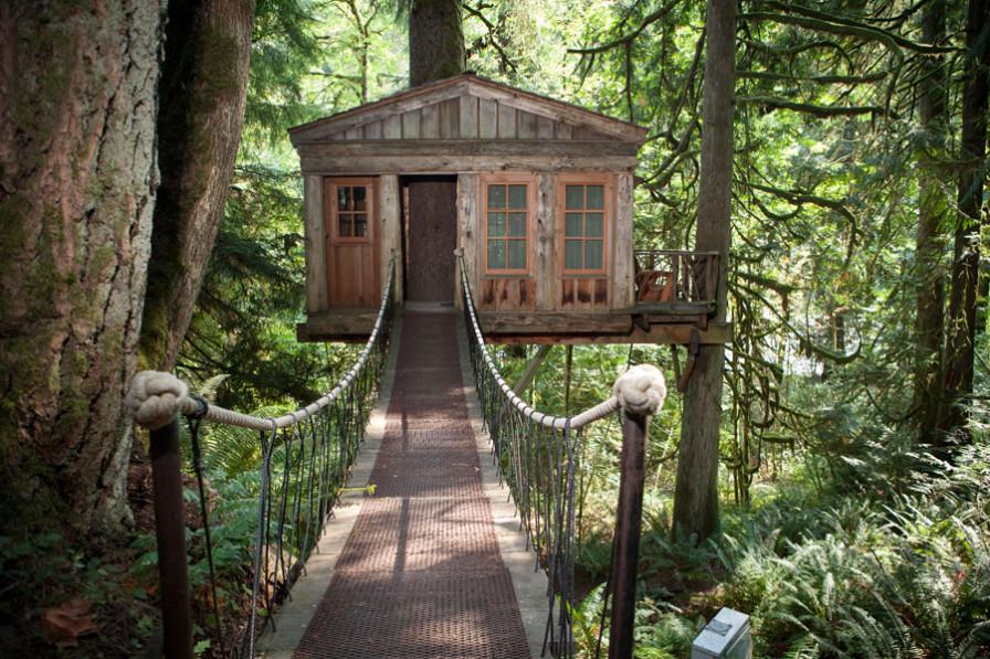 Tree house with suspension bridge