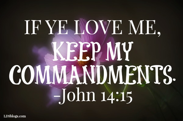 Trust The Commandments