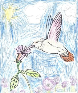 Joey art hummingbird crop