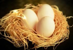 egg-1186756_640
