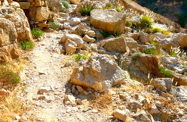 My Incredible Journey on the Road to Jericho