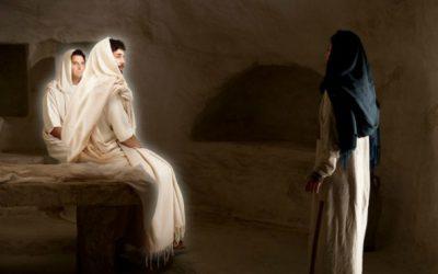 The Joyful Gospel