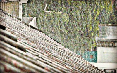 I Survived Hurricane Harvey- Part 3