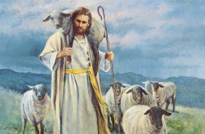 Jesus Christ sheep