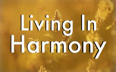 Harmonizing My Home: Marie Kondo Through LDS Eyes