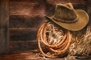 cowboy hat stetson country