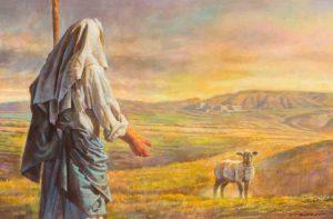 lamb sheep jesus