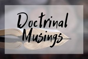Paul Pulsipher Doctrinal Musings