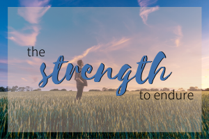 the strength to endure amy keim